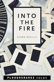 Into the Fire by Susan Neville